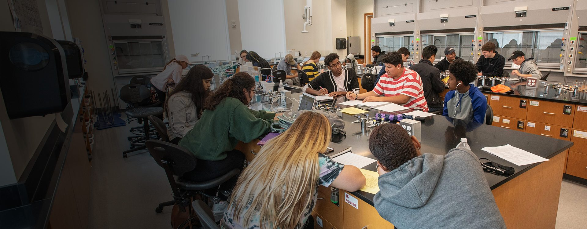Students working together on group projects in a laboratory class